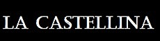 Agenzia Immobiliare La Castellina